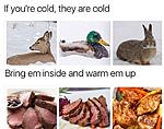 If you are cold