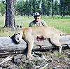 Mountain lion hunts AZ/NM-img-0176.jpg