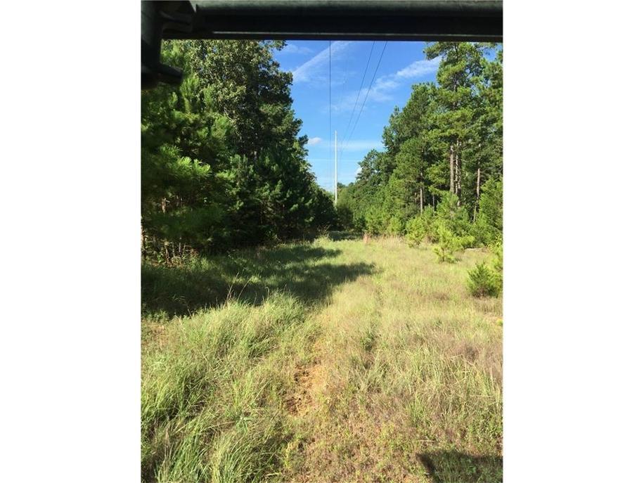 East Texas Hunter's Paradise 100 ACRES - HuntingNet com Forums