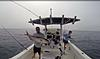 Big time Offshore fishing in South West Florida...The Real Deal-2.jpg