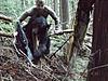 Idaho Wilderness Elk, Deer, Bear, Wolf Swap- OTC Tags!-10305515_10203755087257005_8728659834476167491_n.jpg
