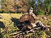 Indiana bird down-indiana_may_1_2020.jpg
