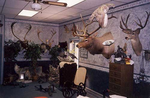 Man Cave Outfitters : Show me your man caves huntingnet forums