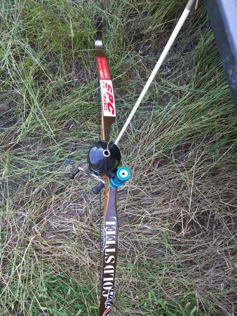 Ams bowfishing reel forums for Bow fishing reel