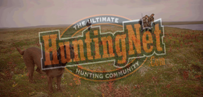 HUNTINGNET.COM STAY SAFE THIS SUMMER GIVEAWAY OFFICIAL RULES